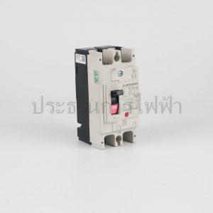 NF125SV 2p 50ka/230v มิตซูบิชิ