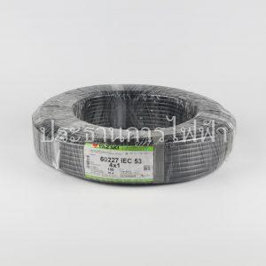 สายไฟ VCT/IEC53